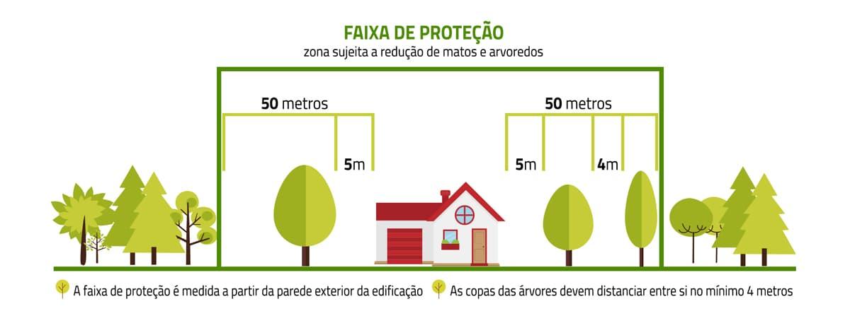 giestas_informações_limpeza_floresta